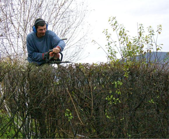 Entretien et maintenance leos paysages for Entretien jardin decembre